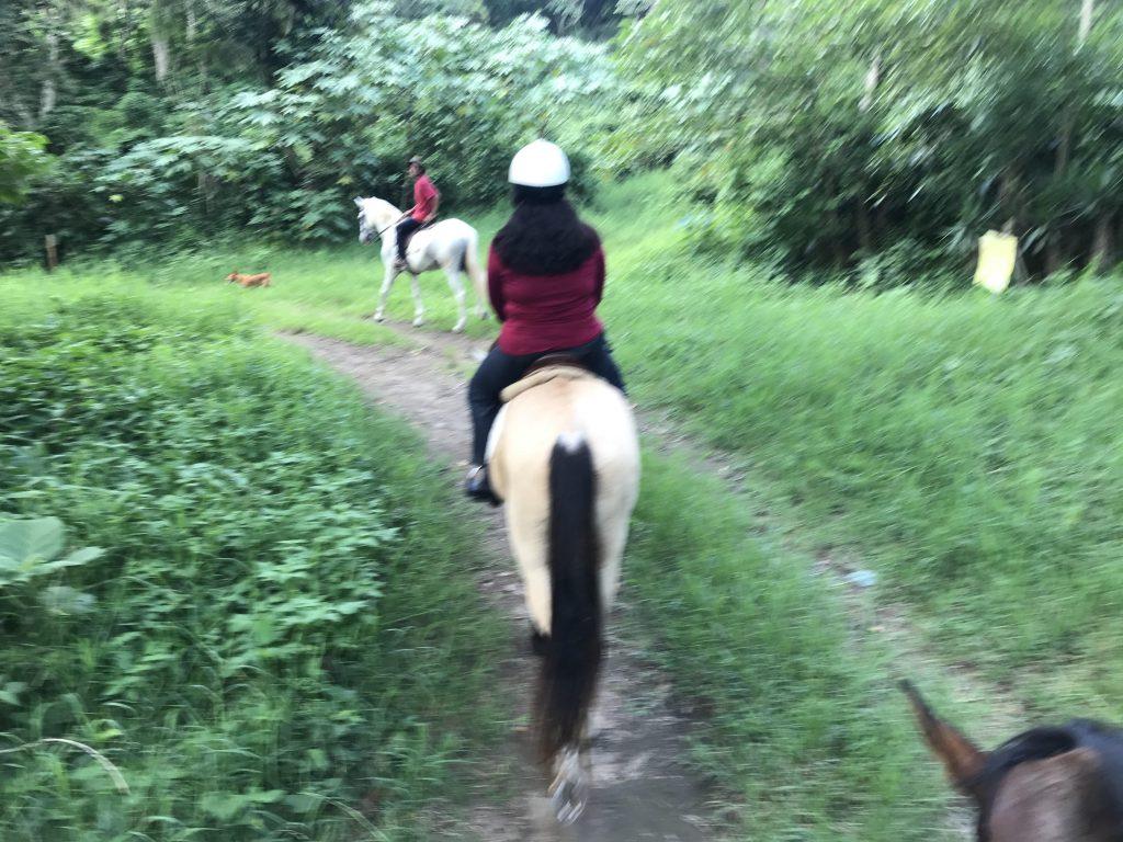 Photo of Horseback Riding in El Salvador