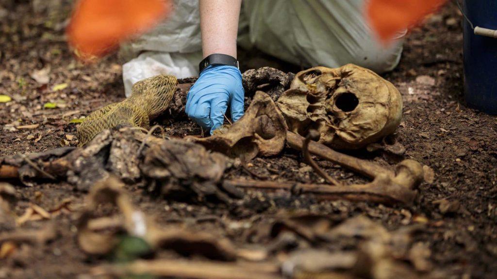Human Bone Forensics