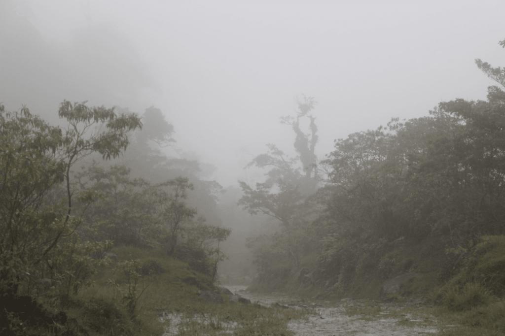 Panama Expedition - El Pianista Trail Boquete